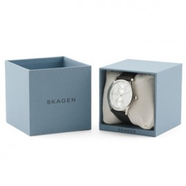 Skagen Classic Watch for Him